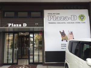 plaza-d入り口