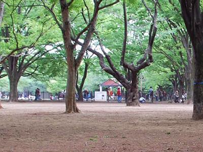 出典:代々木公園ドッグラン公式サイト