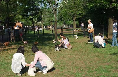 出典:国営昭和記念公園HP