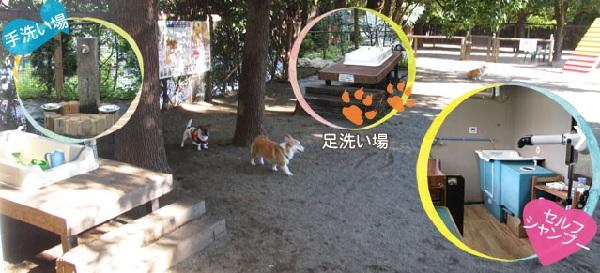 出典:木村植物園HP(旧ドッグフォレスト湘南)