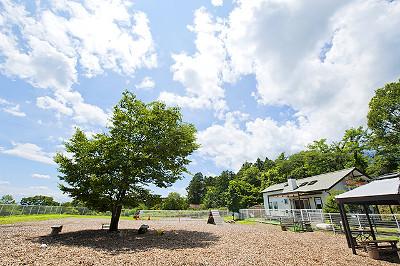 出典:水沢ドッグランWANport/cafe sun's公式サイト