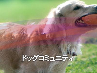 出典:つま恋リゾート彩の郷公式サイト