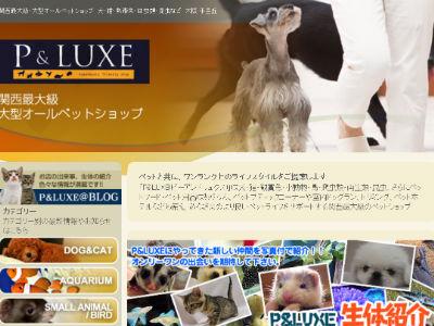 出典:P&LUXE(ピーアンドリュクス)公式サイト