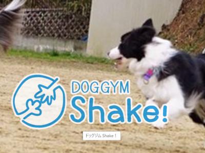 出典:ドッグジム Shake!公式サイト